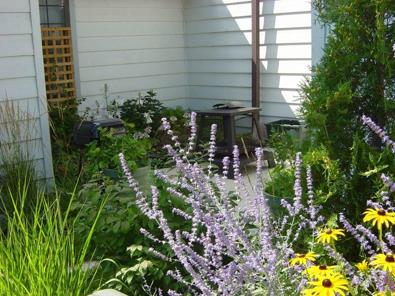 Madison landscape design 036 sprout landscape garden for Garden design quiz
