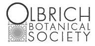 olbrich-bw