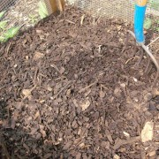 backyard composting tips