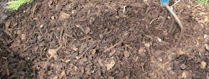 backyard composting tips